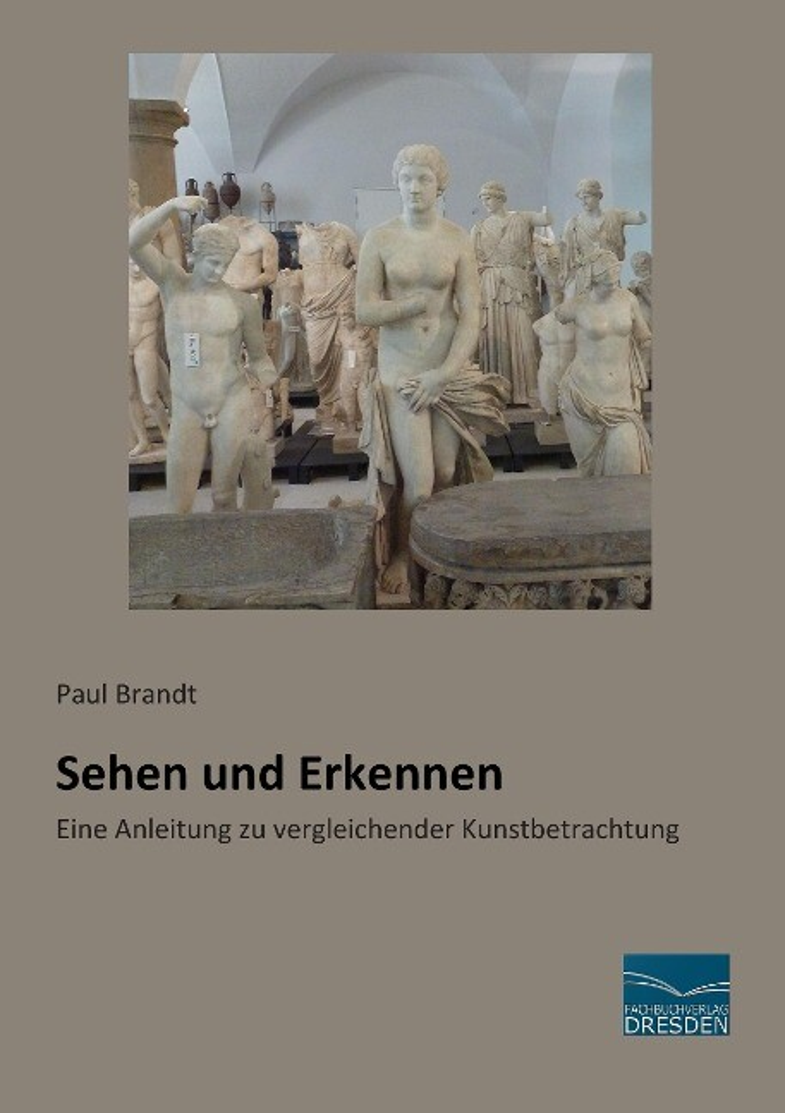 Sehen und Erkennen als Buch von Paul Brandt