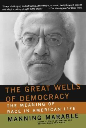 The Great Wells of Democracy: The Meaning of Race in American Life als Taschenbuch