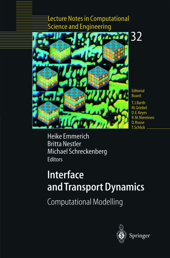 Interface and Transport Dynamics als Buch