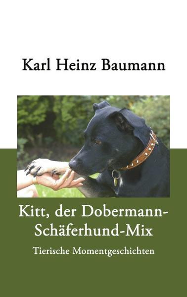 Kitt, der Dobermann-Schäferhund-Mix als Buch