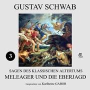 Meleager und die Eberjagd (Sagen des klassischen Altertums 3)