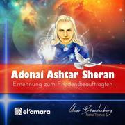 Ashtar Sheran: Ernennung zum Friedensbeauftragten