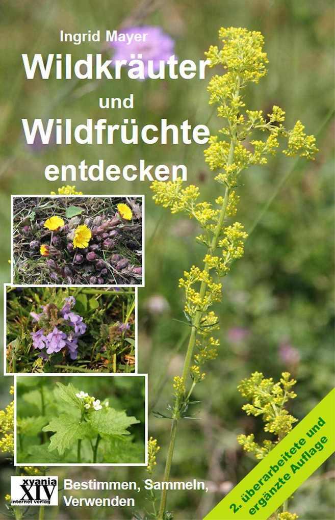 Wildkräuter und Wildfrüchte entdecken als eBook