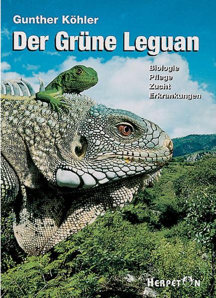 Der Grüne Leguan als Buch