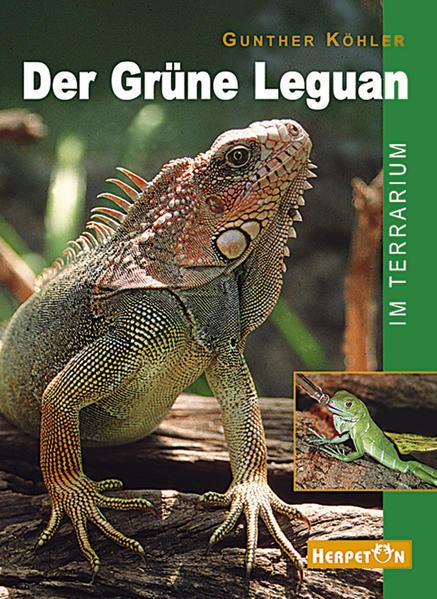 Der Grüne Leguan im Terrarium als Buch