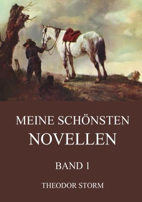 Meine schönsten Novellen, Band 1 als Buch