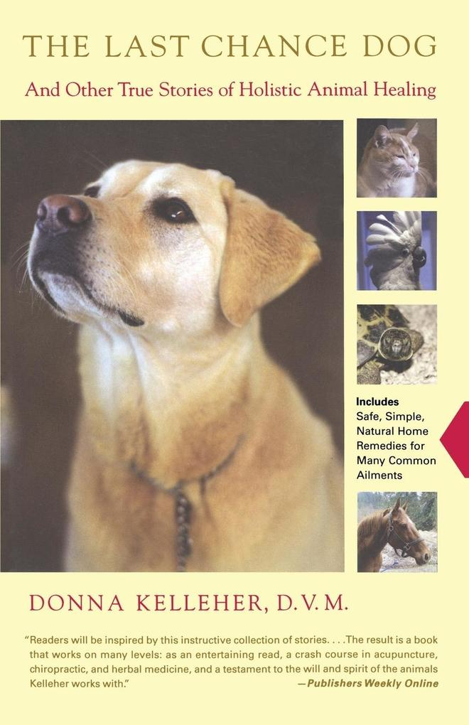 The Last Chance Dog: And Other True Stories of Holistic Animal Healing als Taschenbuch