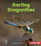 Darting Dragonflies