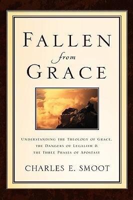 Fallen from Grace als Taschenbuch