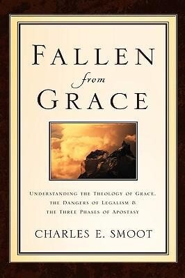 Fallen from Grace als Buch