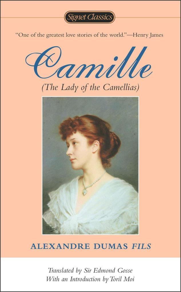Camille als Taschenbuch