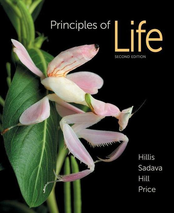 PRINCIPLES OF LIFE & LAUNCHPAD als Buch