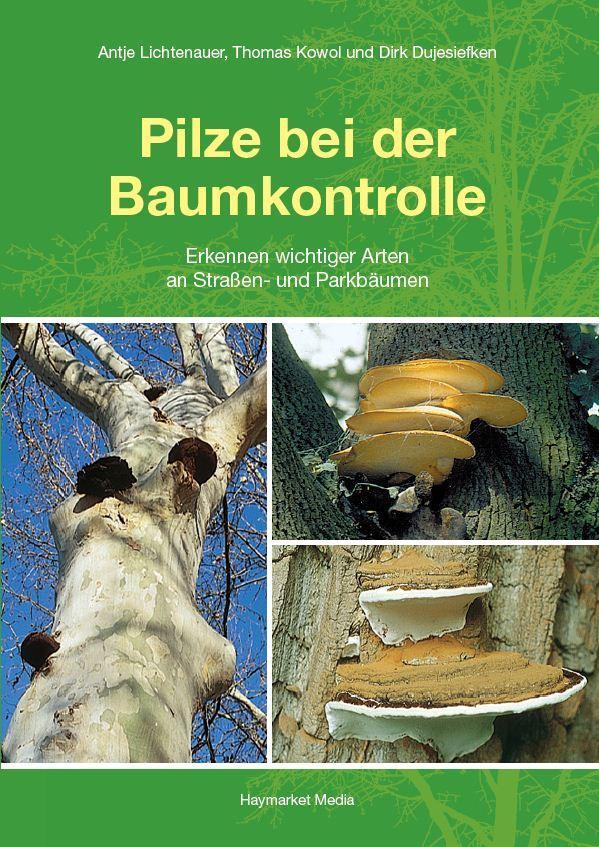 Pilze bei der Baumkontrolle als Buch