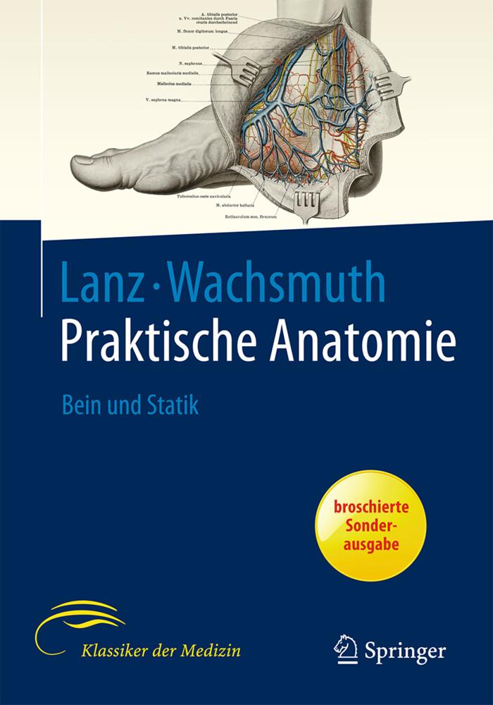 Bein und Statik als Buch