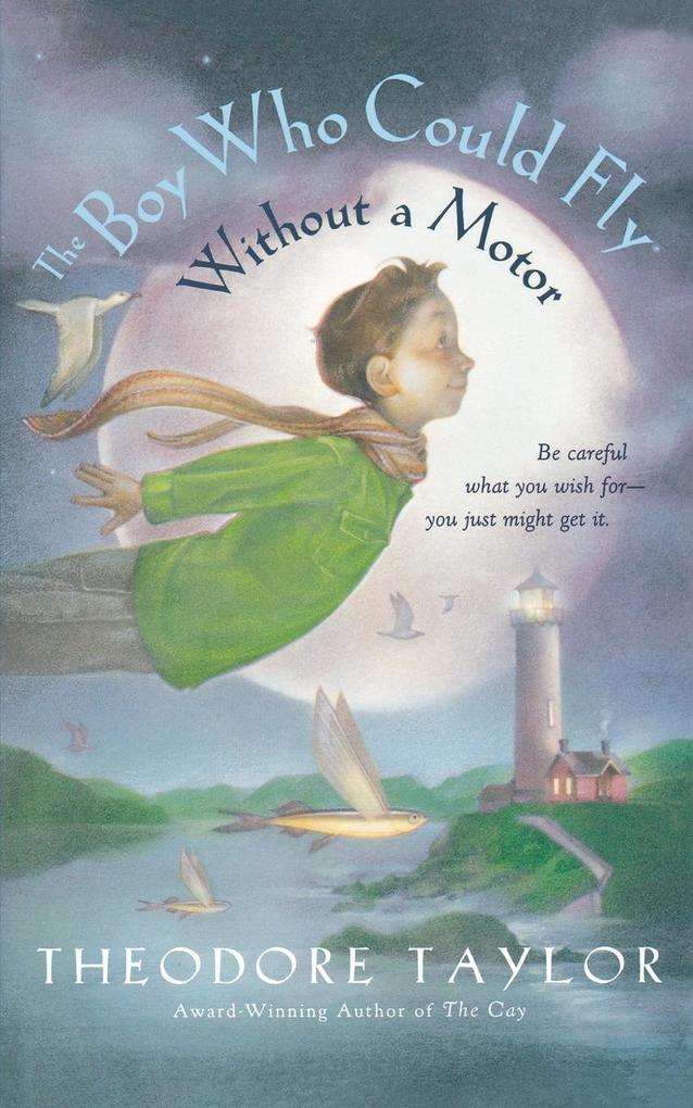 The Boy Who Could Fly Without a Motor als Taschenbuch