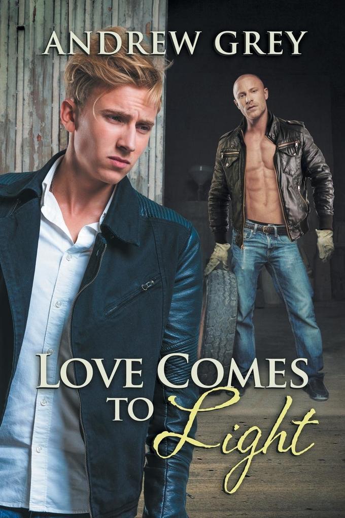 Love Comes to Light als Buch von Andrew Grey
