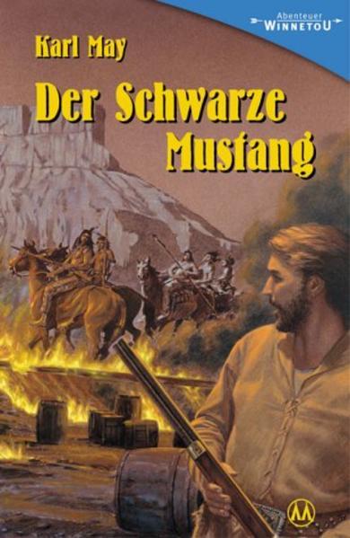 Der schwarze Mustang als Buch