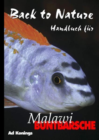 Malawibuntbarsche als Buch