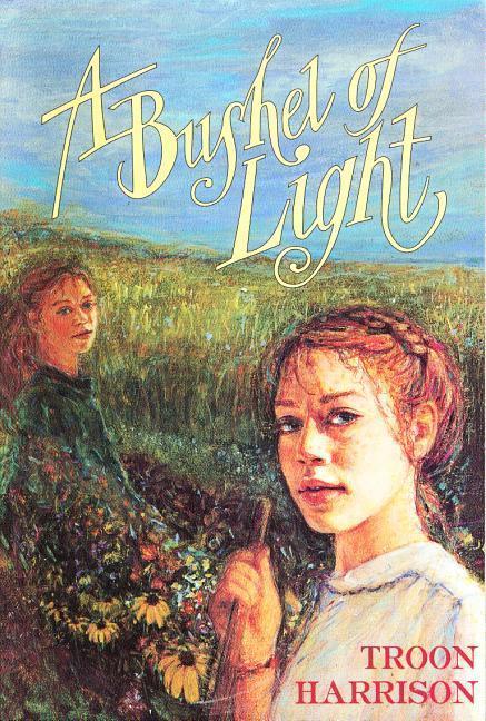 Bushel of Light P als Taschenbuch