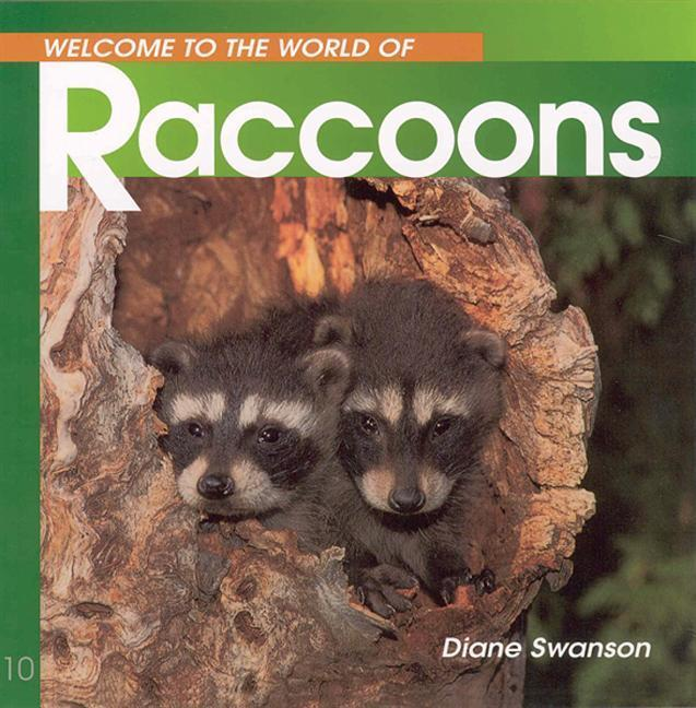 Welcome to the World of Raccoons als Taschenbuch