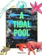 A Tidal Pool