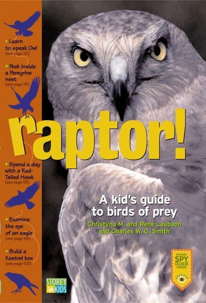 Raptor!: A Kid's Guide to Birds of Prey als Taschenbuch