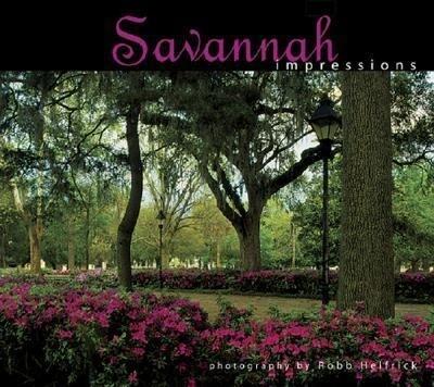 Savannah Impressions als Taschenbuch