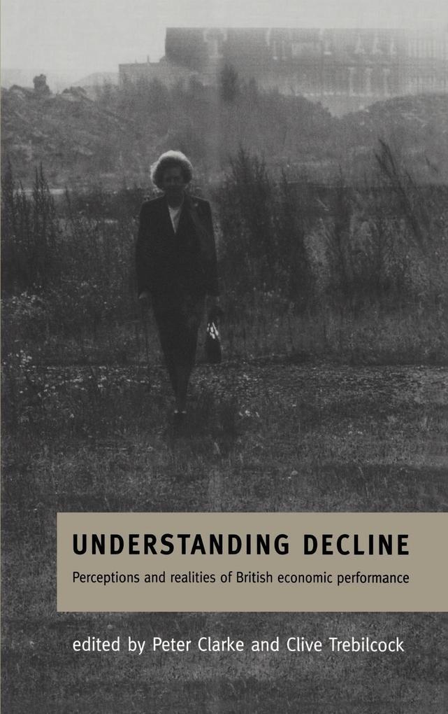 Understanding Decline als Buch (gebunden)