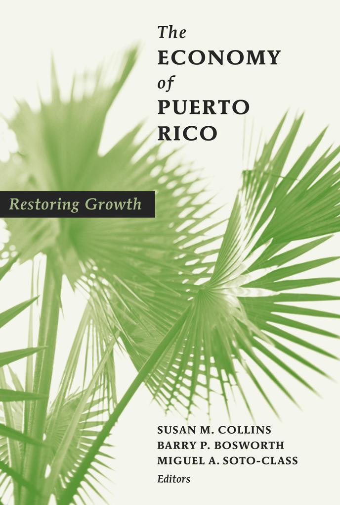 The Economy of Puerto Rico als eBook