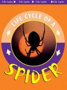 Spider als eBook Download von Jason Cooper