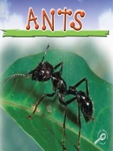 Ants als eBook Download von Jason Cooper