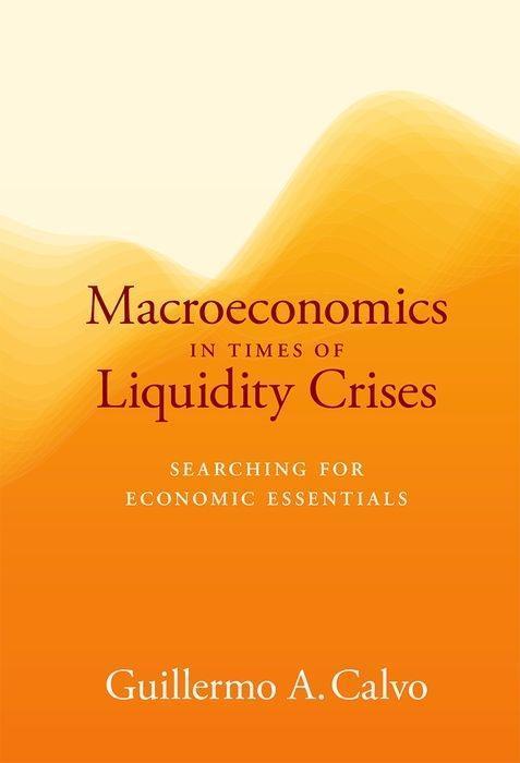 Macroeconomics in Times of Liquidity Crises als Buch (gebunden)