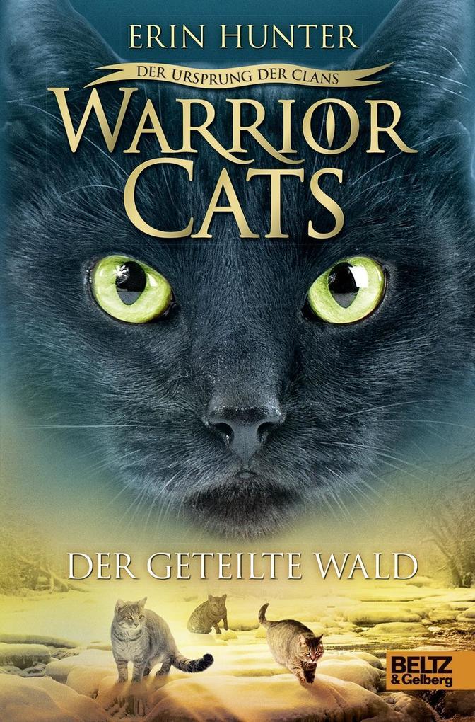 Sternenglanz Warrior Cats