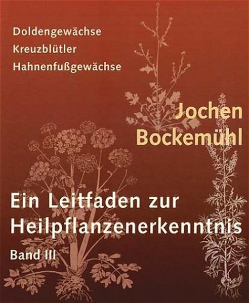 Ein Leitfaden zur Heilpflanzenerkenntnis 3 als Buch