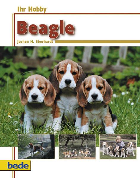 Ihr Hobby Beagle als Buch