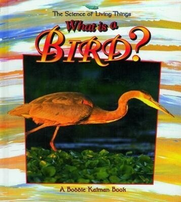 What is a Bird? als Buch
