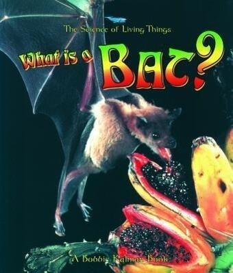 What Is a Bat? als Taschenbuch
