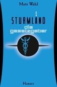 Sturmland 03 - Die Gesetzgeber