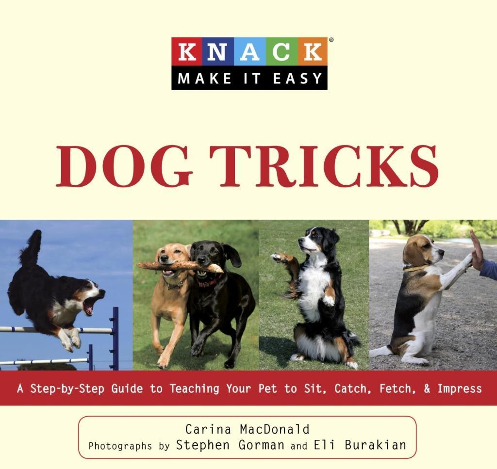 Knack Dog Tricks als eBook Download von Carina ...