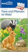 miniLÜK. Tiere und Pflanzen: im Wald