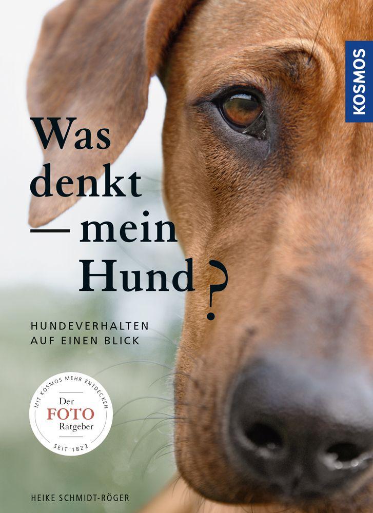 Was denkt mein Hund? als Buch von Heike Schmidt...