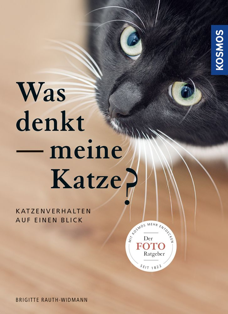 Was denkt meine Katze als Buch von Brigitte Rau...