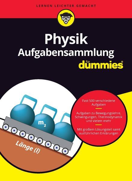 Aufgabensammlung Physik für Dummies als Buch von