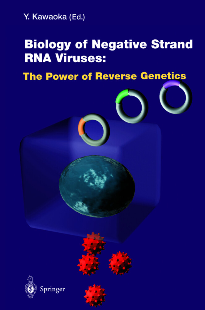 Biology of Negative Strand RNA Viruses: The Power of Reverse Genetics als Buch