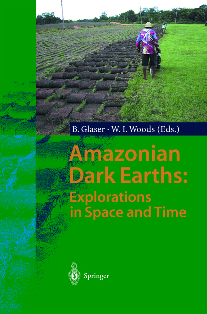 Amazonian Dark Earths: Explorations in Space and Time als Buch