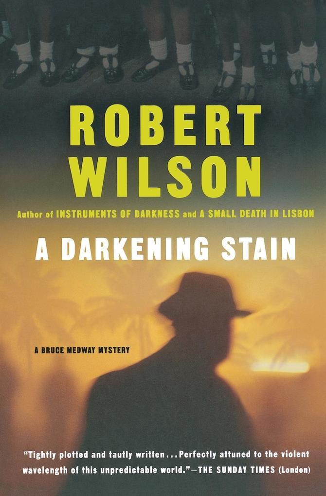 A Darkening Stain als Taschenbuch