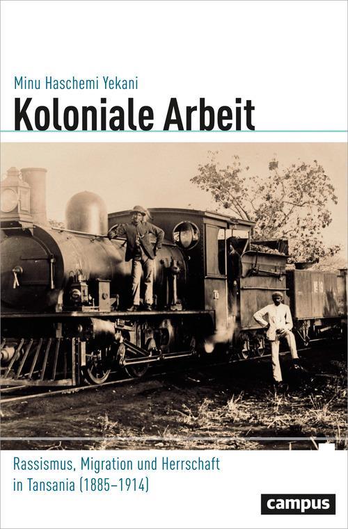 Koloniale Arbeit als eBook