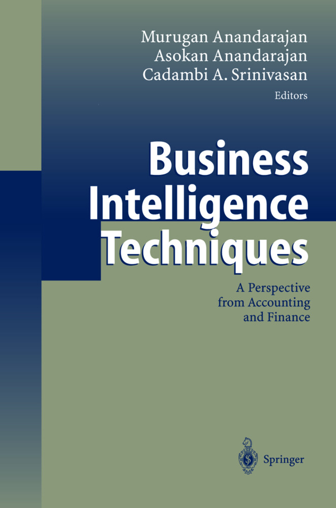 Business Intelligence Techniques als Buch