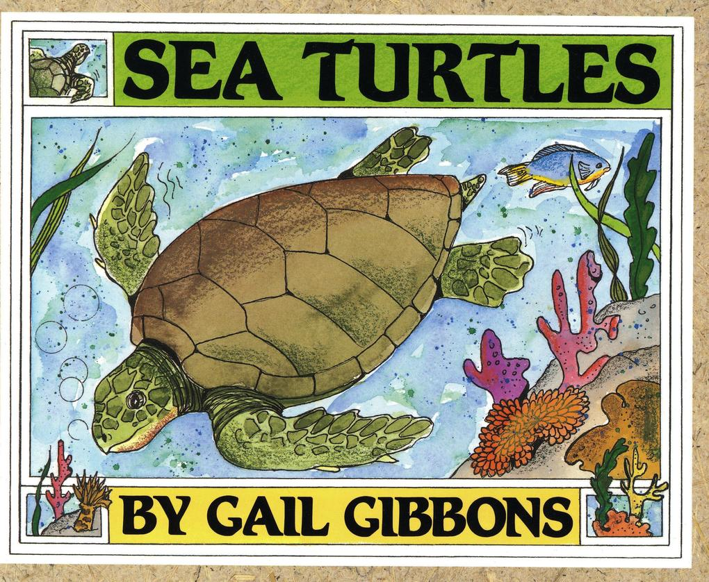 Sea Turtles als Buch