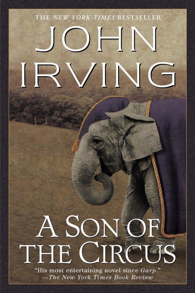 A Son of the Circus als Taschenbuch
